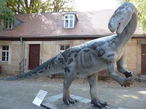 Plateosaurus, Foto: Heineanum